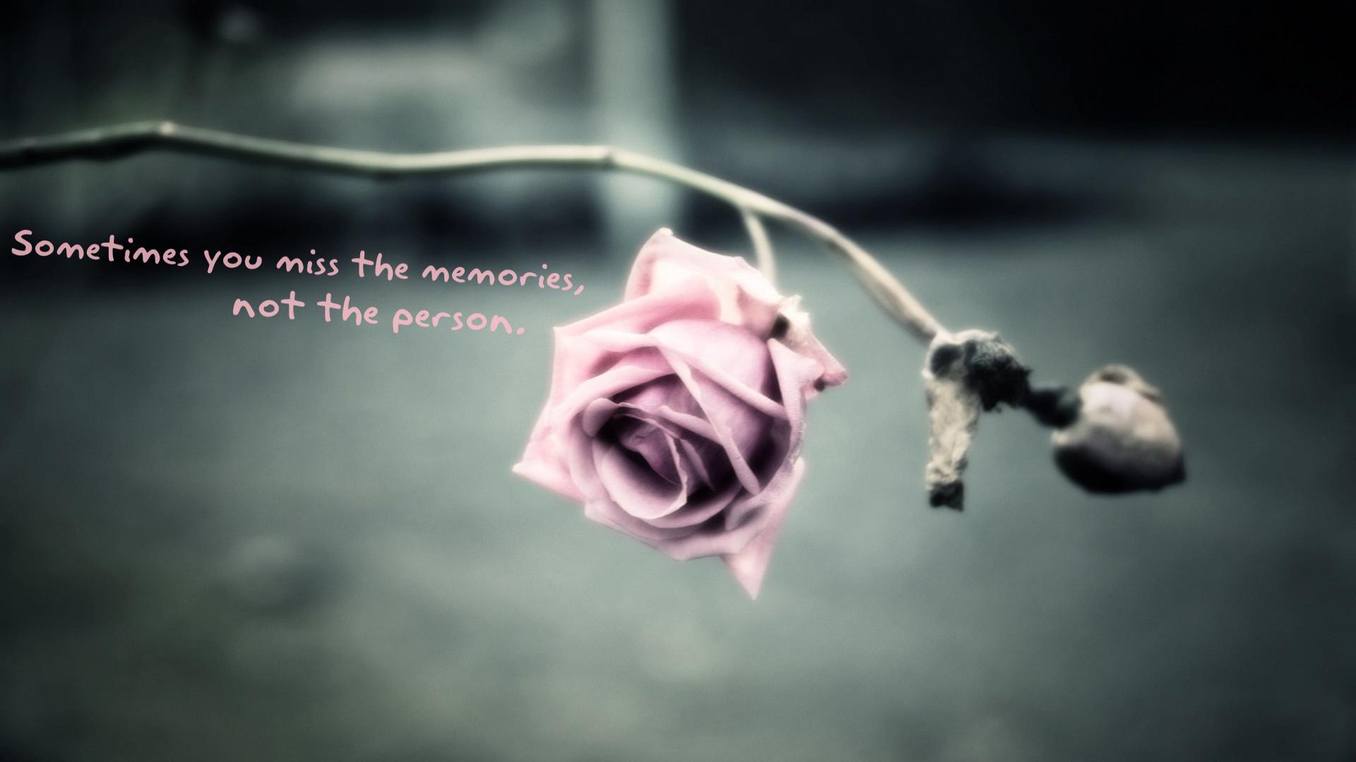 Citate Cu Fotografi : Cele mai frumoase citate de dragoste cu poze pentru
