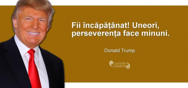 Citate Celebre Citate motivationale Donald Trump