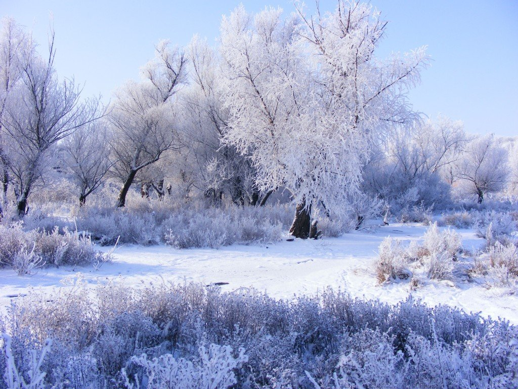 peisaje iarna1