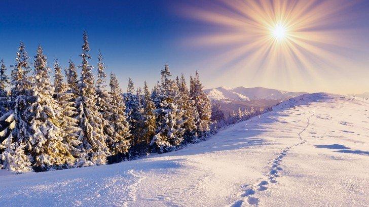 poze iarna
